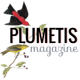 Plumetis magazine - Chou du Volant